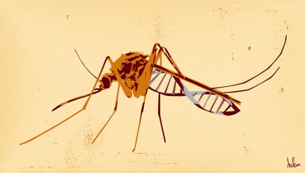 Biotechnologies, moustiques et darwinisme